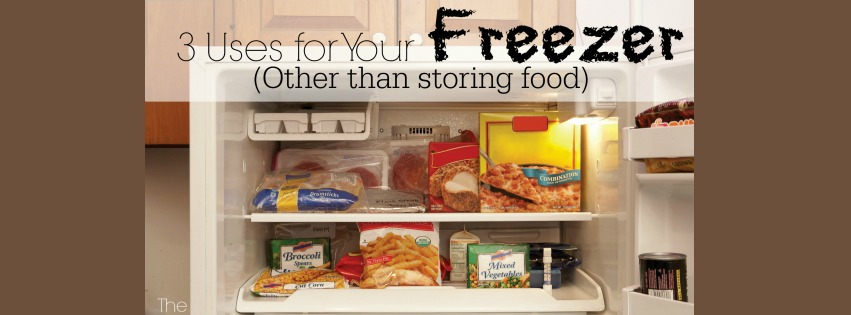 3 Uses for Your Freezer ~ Other Than Storing Food