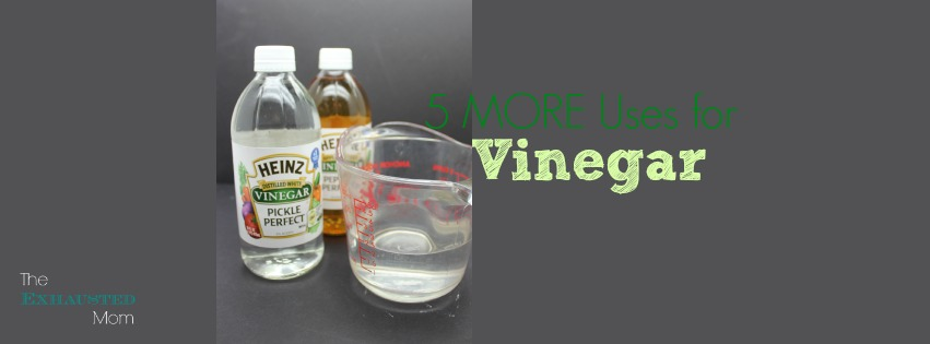 5 MORE Uses for Vinegar
