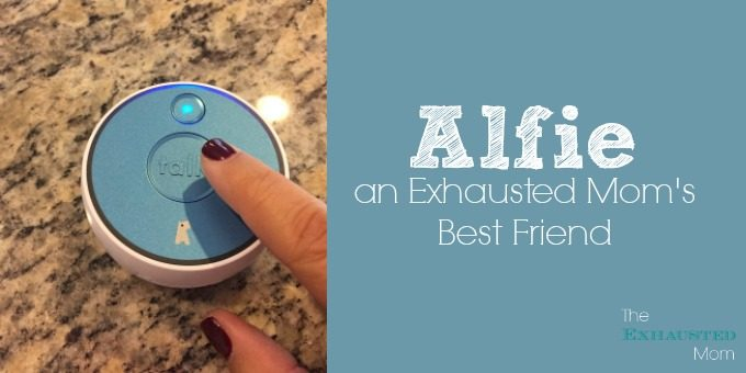 Alfie: an Exhausted Mom's Best Friend